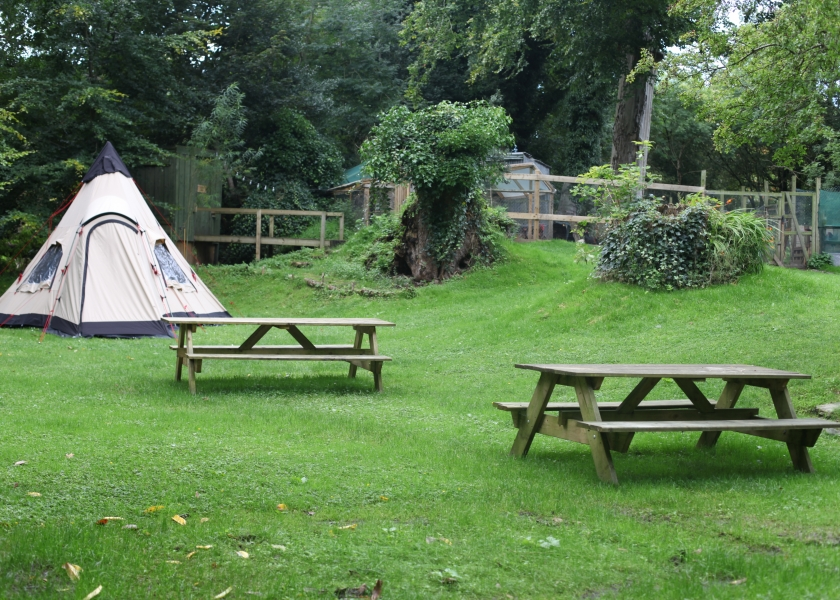 Camping at Moville Boutique Hostel