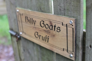 Visit the Goats at Moville Boutique Hostel